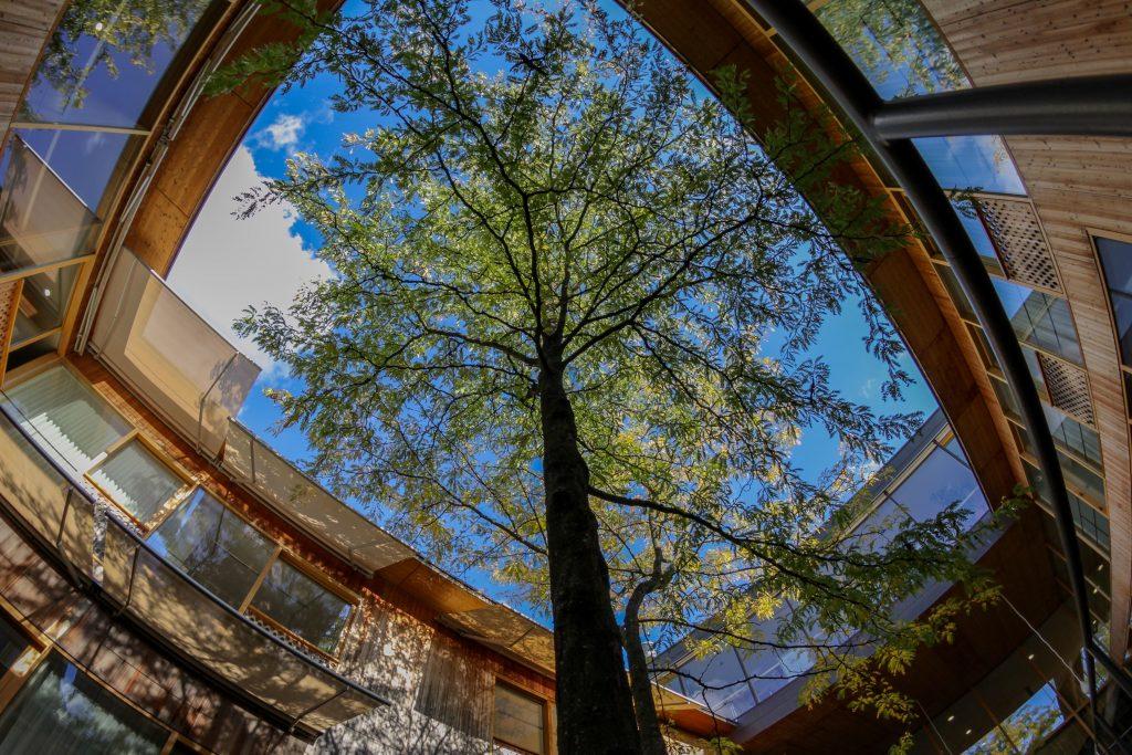 Beispiel für heilsame Architektur: die Rehabilitationsklinik REHAB in Basel. Mehr dazu im Atmosphere Design Journal. Fotos: REHAB / Daniel Thoma www.rehab.ch